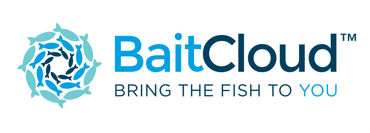 Picture for category Baitcloud
