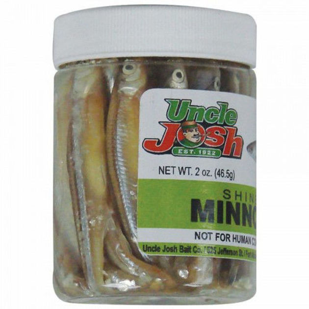 Picture for category Jar Baits Preserved