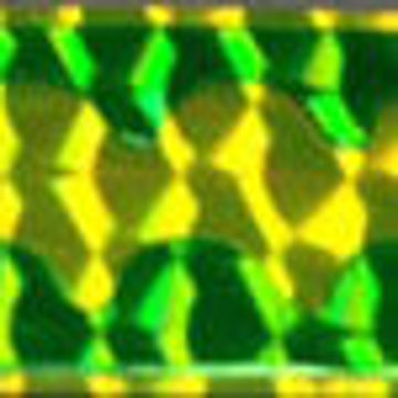 3306048.jpg
