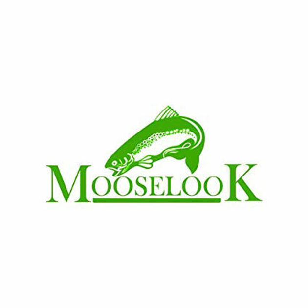 Picture for category Mooselook