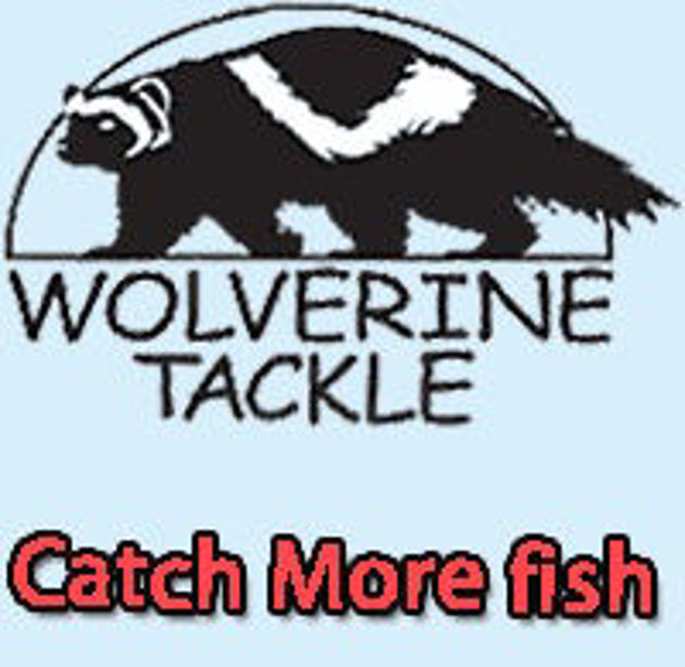 Picture for category Wolverine
