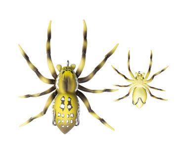 spider01.jpg
