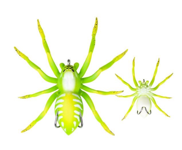 spider031.jpg