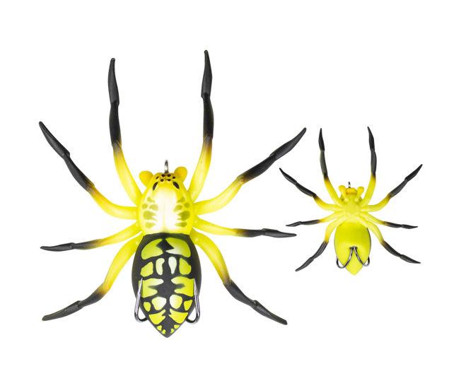 spider041.jpg