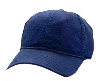 Blue Cap.jpg