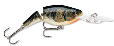 Picture for category Jointed Shad Rap #5