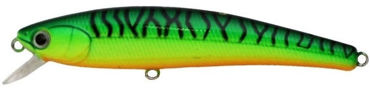 Picture for category TS Minnow
